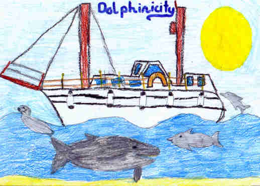 Dolphinicity with dolphins